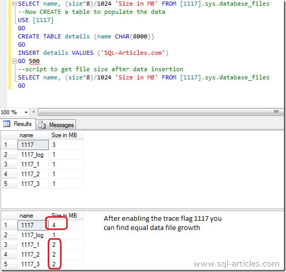 trace_flag_1117_2